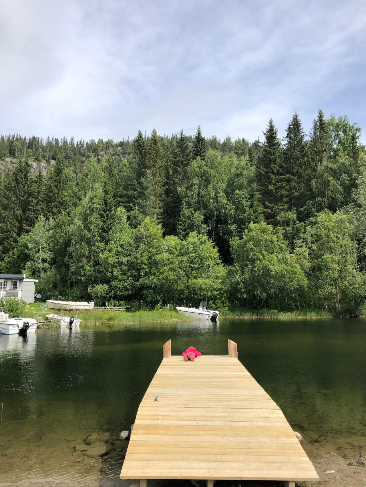 Oslo to Bergen:Ryfoss